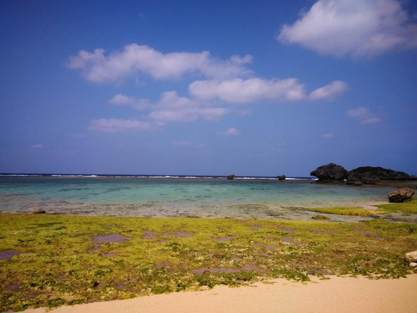 這邊的海灘的確十分漂亮。