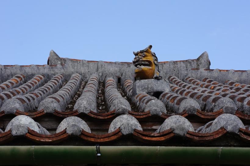 也是琉球村內的。牠在看哪裡了?