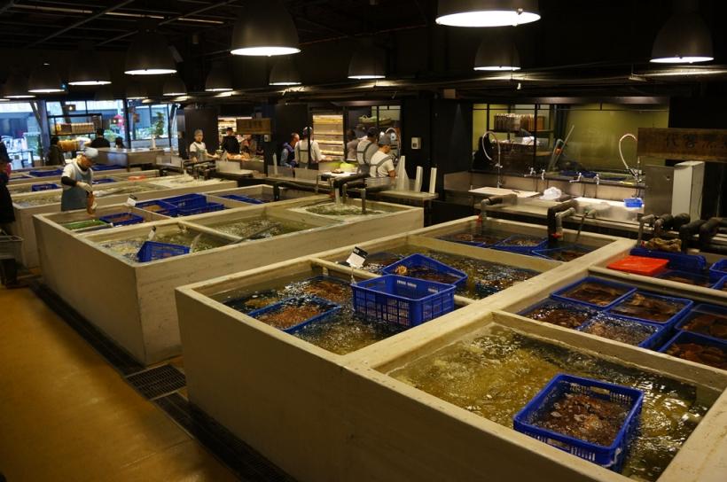正門進去有生鮮的海產, 當然可以選購內用, 也好像有點家在立吞區幫食客料理.